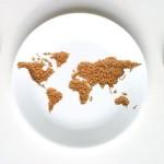 malnutrizione-pianta-tropicale